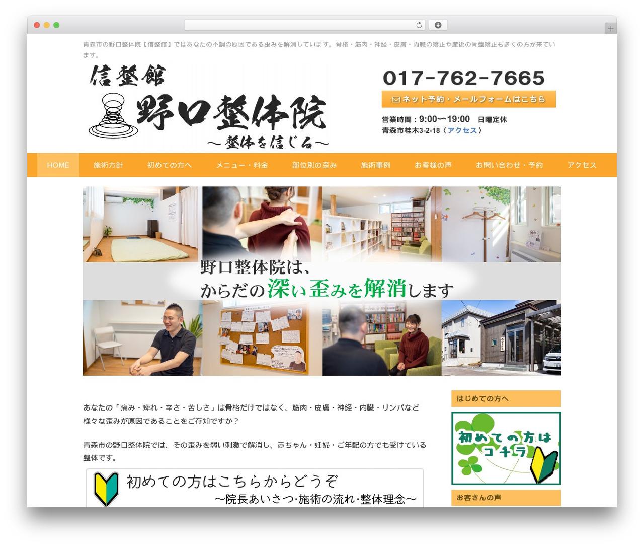 n-seitai template WordPress - noguchi-seitaiin.com