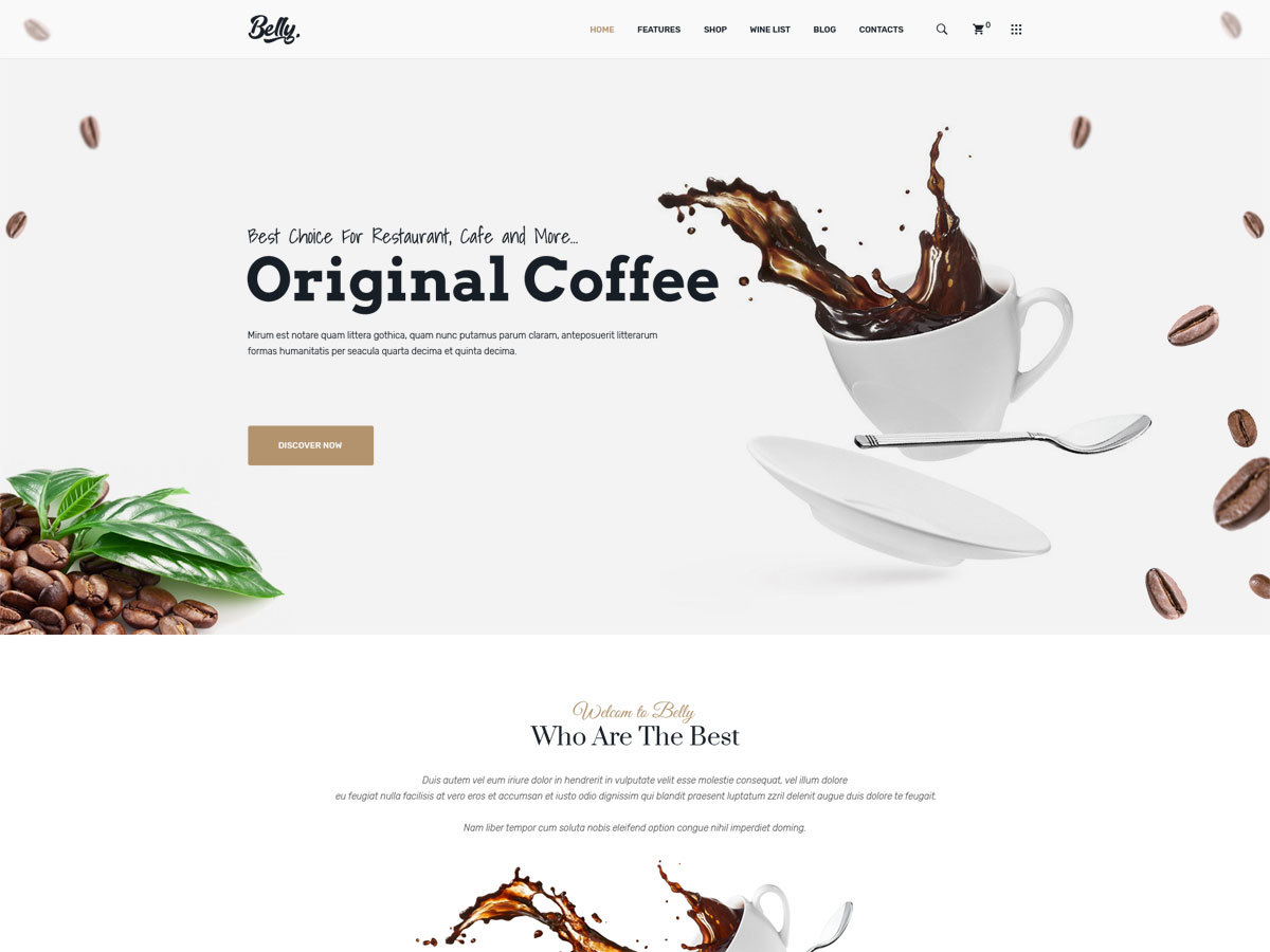 Belly best WooCommerce theme by Road-Themes