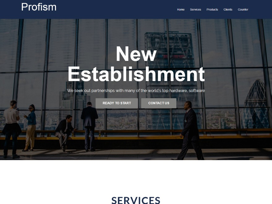 Profism WordPress template for business
