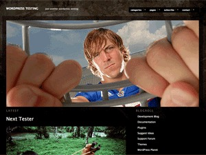 Modularity Lite Child WordPress website template