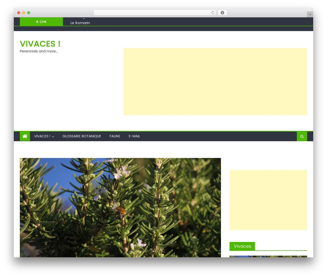 WordPress website template Newspaper Lite - vivaces.be