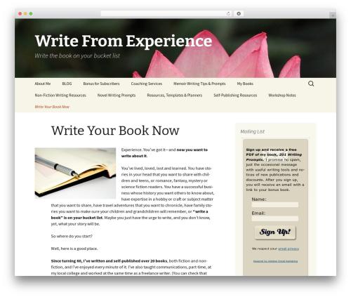 Twenty Thirteen WordPress free download - writefromexperience.net