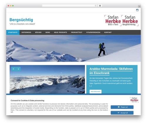 Merlin best free WordPress theme - bergbild.info