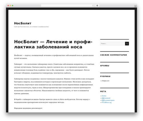 WP theme Twenty Sixteen - nosbolit.ru