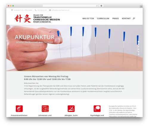 The7 WordPress page template - praxis-fuer-tcm.ch