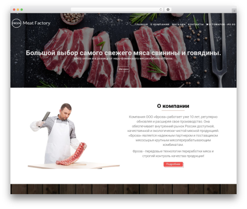 Food Express WP template - froza-meat.ru