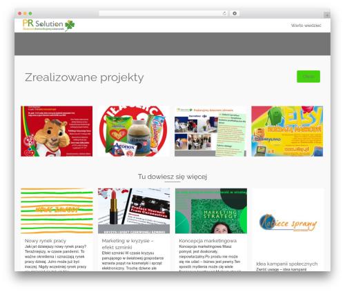WordPress theme Pinnacle - prsolution.pl