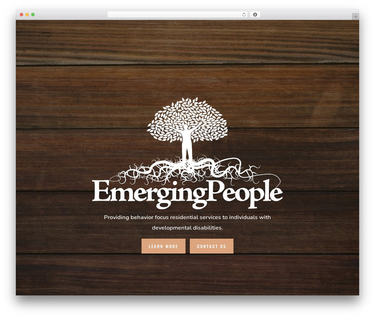 Divi theme WordPress - emergingpeople.org