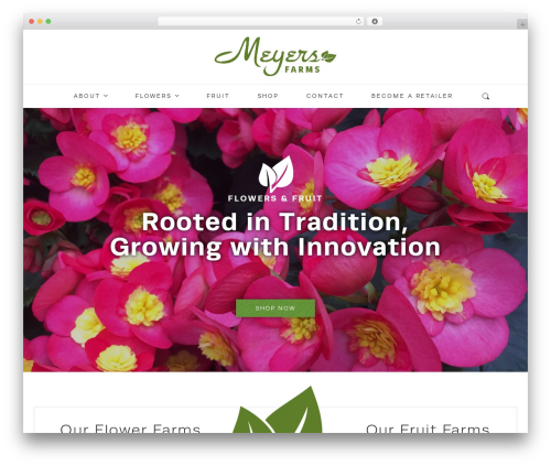 Theme WordPress Mayer - meyersfruitfarms.com