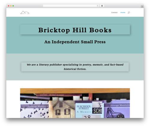 WordPress theme Divi - bricktopbooks.com