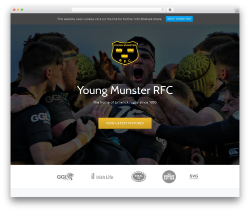 Parallax One top WordPress theme - youngmunster.com