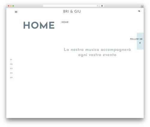 One Page Portfolio personal blog WordPress theme - brigiumusic.com