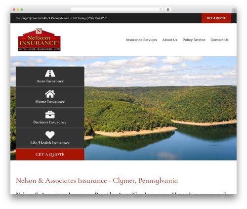 WP theme BrightFire Stellar - nelsoninsurance.net