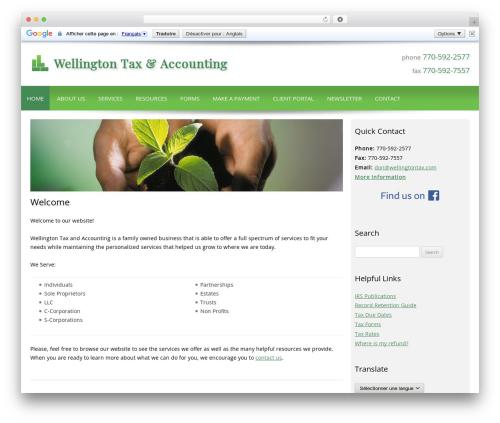 Customized WP theme - wellingtontax.net