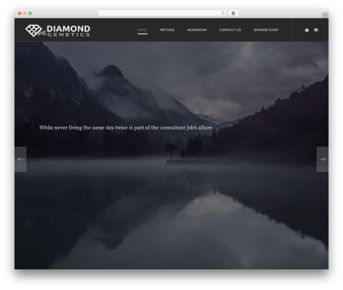 Unova WordPress theme - geneticdiamonds.com