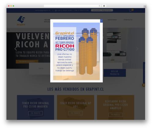 Salient WordPress page template - grapint.cl