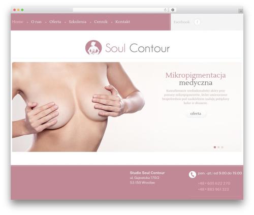 Best WordPress template cherry - soulcontour.pl