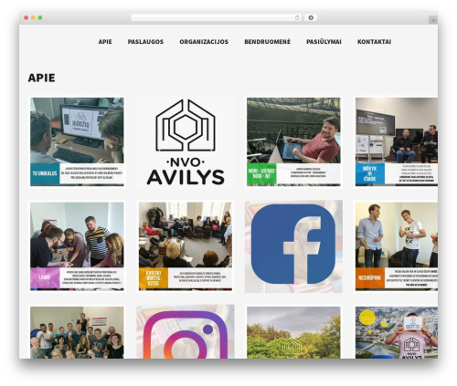 Skylar WordPress theme - nvoavilys.lt