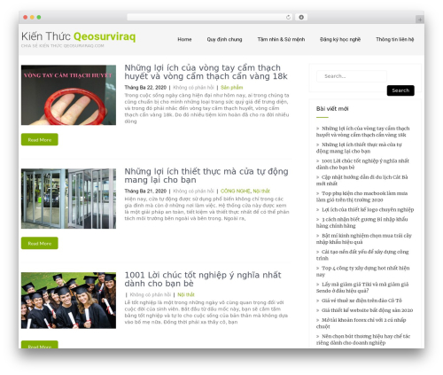 Eco Friendly Lite WordPress website template - geosurviraq.com