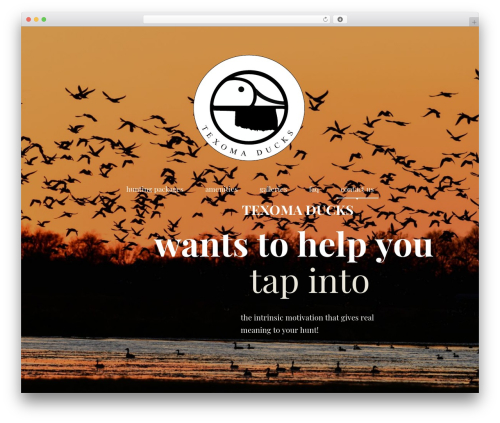 Best WordPress template Pathter - texomaducks.com