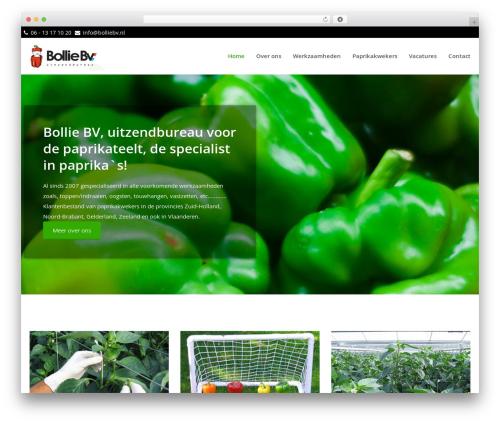 theme001 WordPress theme - bolliebv.nl