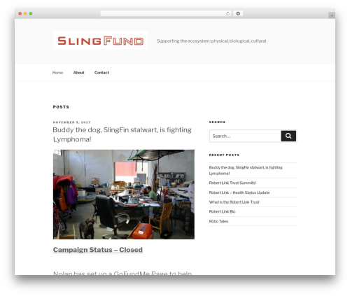 Twenty Seventeen free website theme - slingfund.org