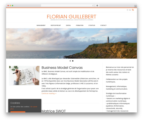 Conica free WP theme - florianguillebert.com