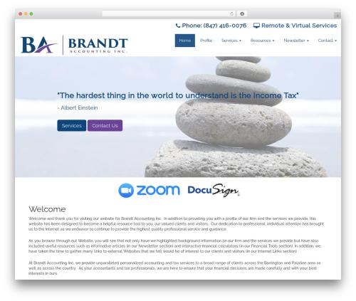 Customized3 best WordPress theme - brandtaccountinginc.com