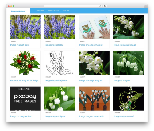 LevelPro theme WordPress - rosesetdelices.fr