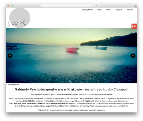 CS GROUP 2016 top WordPress theme - terapia-w-krakowie.pl