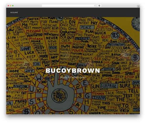 Lodestar premium WordPress theme - bucoybrown.com