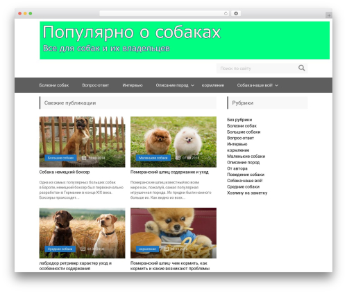 Free WordPress Art Decoration Shortcode plugin - forumosobakah.ru