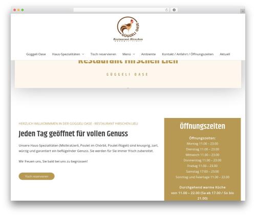 WordPress wpcopyprotectionsu plugin - gueggeli.ch