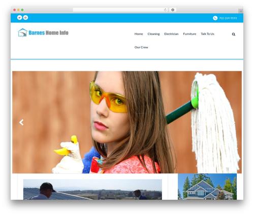 Best WordPress theme Mediclean - barnegatlight-nj.com