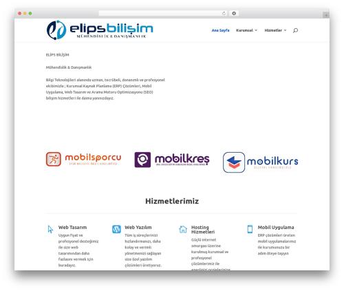 Divi theme WordPress - elipsbilisim.com