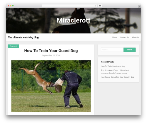 Responsiveness WordPress template free download - miraclerott.com