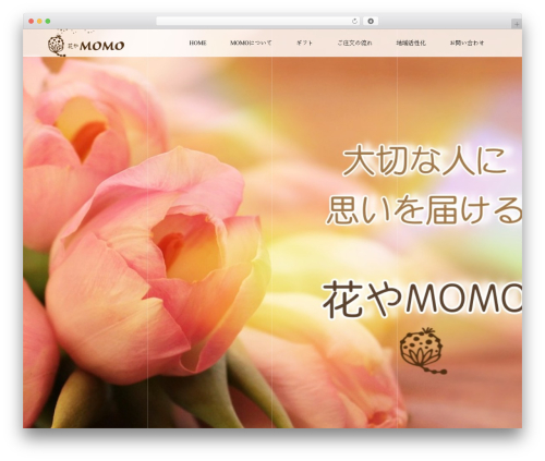 VOGUE top WordPress theme - hanayamomo.com