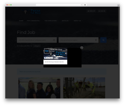 WorkScout WordPress theme design - texasjobshop.com