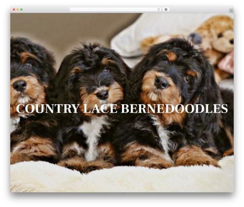 WP template Ovation - countrylacebernedoodles.com