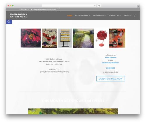 Divi theme WordPress - mamaroneckartistsguild.org