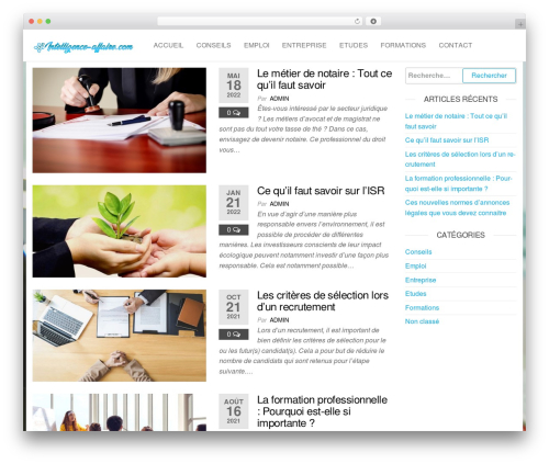 Futurio WordPress blog template - intelligence-affaire.com
