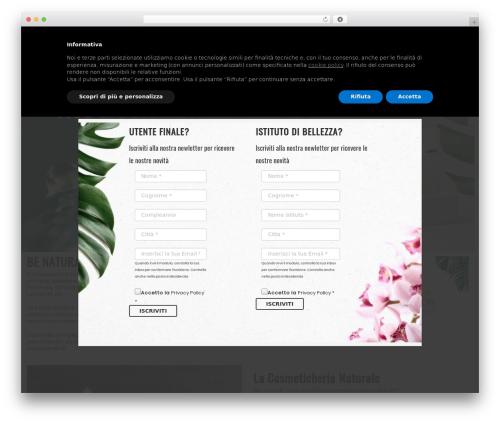 WordPress wordpress-store-locator plugin - 2gbeautycom.com