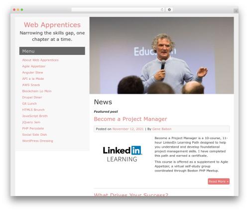 LeftSide premium WordPress theme - webapprentices.org