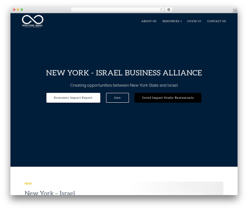 Materialis PRO WordPress theme - nyisrael.org