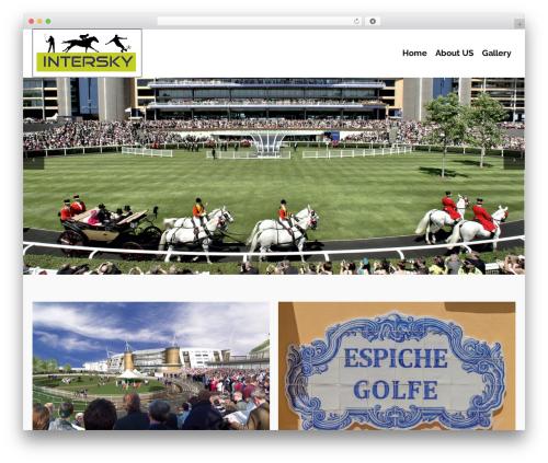 Pinnacle WordPress template free - interskygroup.com
