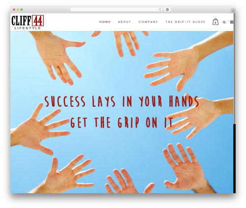 Bazaar WordPress theme - cliff44.com