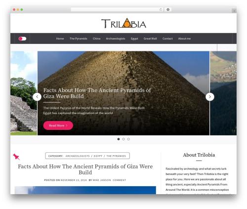 Galway Lite WordPress theme - trilobia.com