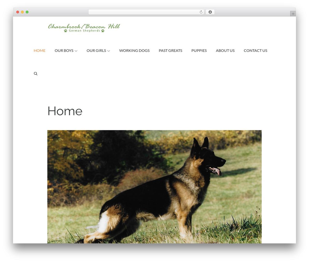 Pet Business company WordPress theme - charmbrookgermanshepherds.com