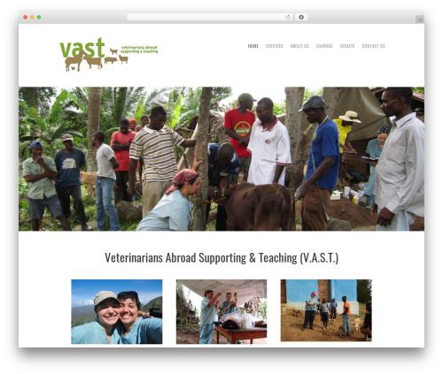Storyteller top WordPress theme - vetsabroad.org