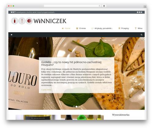 Theme WordPress Cookbook - winniczek.eu